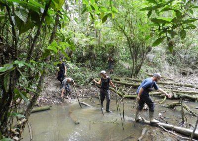 Jungle Hike, Bamboo Lodge, Ecuador