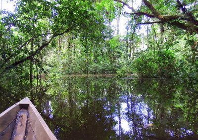 Cuyabeno paddling, Bamboo Lodge