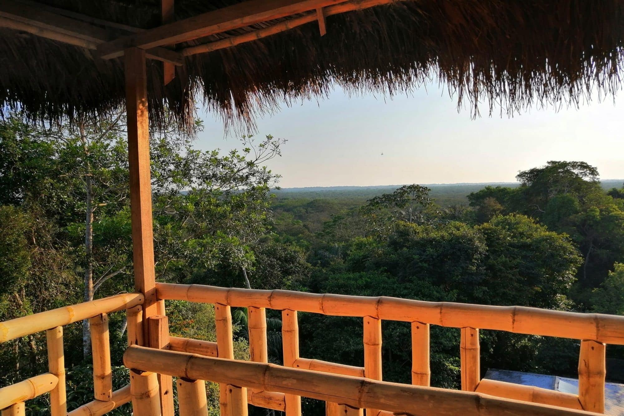 View from Bamboo Lodge bird watching tower