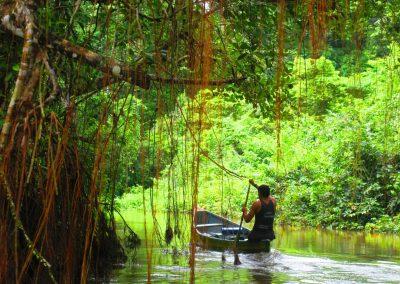 Paddling Bamboo Lodge Cuyabeno