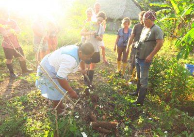 Amazon Tours Cuyabeno with Bamboo Lodge