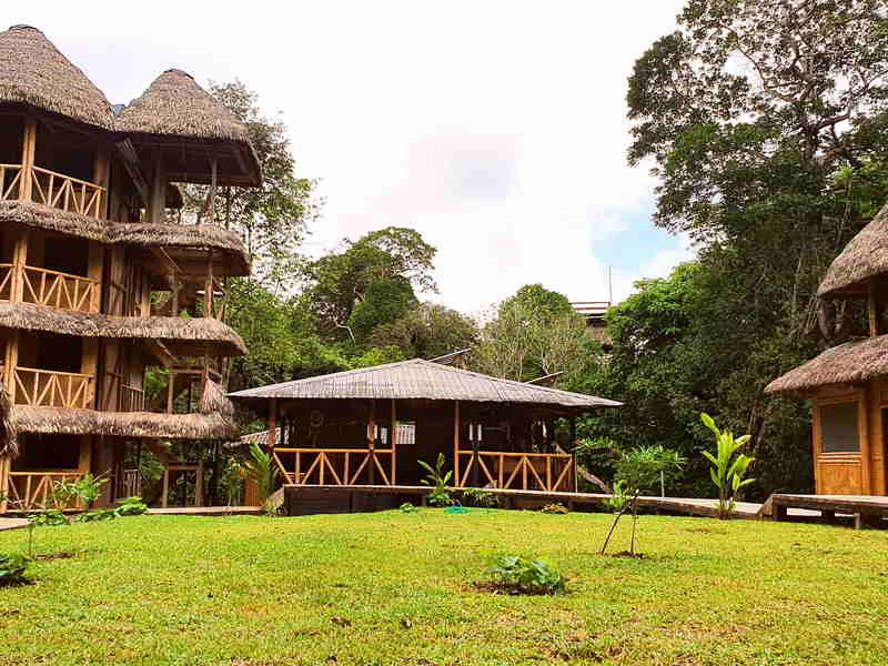 bamboo lodge cuyabeno ecuador