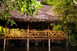 Bamboo Lodge